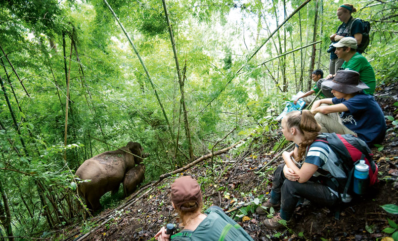 A New Ecotourism in Thailand