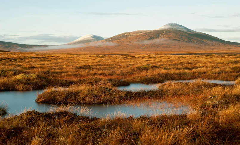 Restoring the Peatland of the Flow Country, Scotland