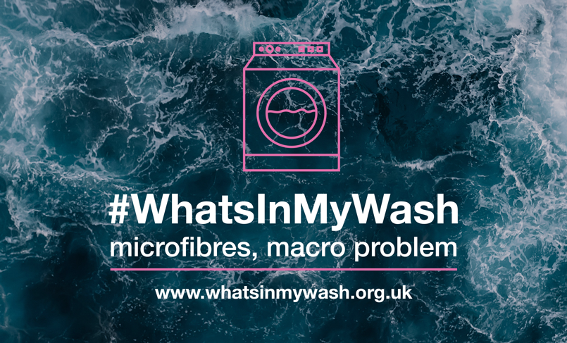 What's In My Wash?
