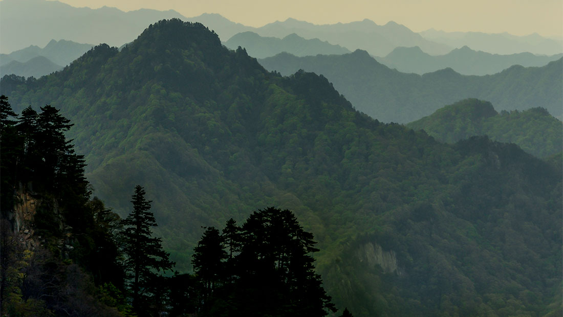 China's National Parks Reinvented
